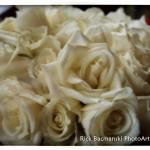 20140329-RB1_5069